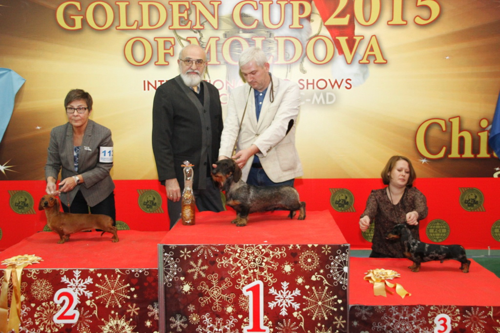 FCI group IV - Winners of the International Dog Show «Golden Cup of Moldova 2015» (Moldova), Sunday, 13 December 2015 (BIS photo)