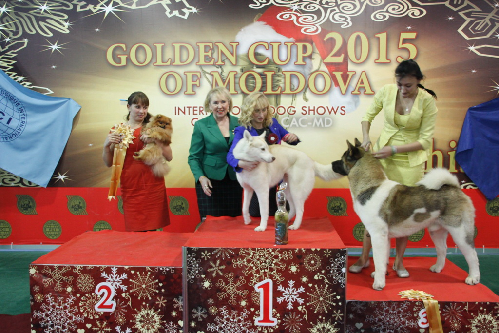 FCI group V - Winners of the International Dog Show «Golden Cup of Moldova 2015» (Moldova), Sunday, 13 December 2015 (BIS photo)
