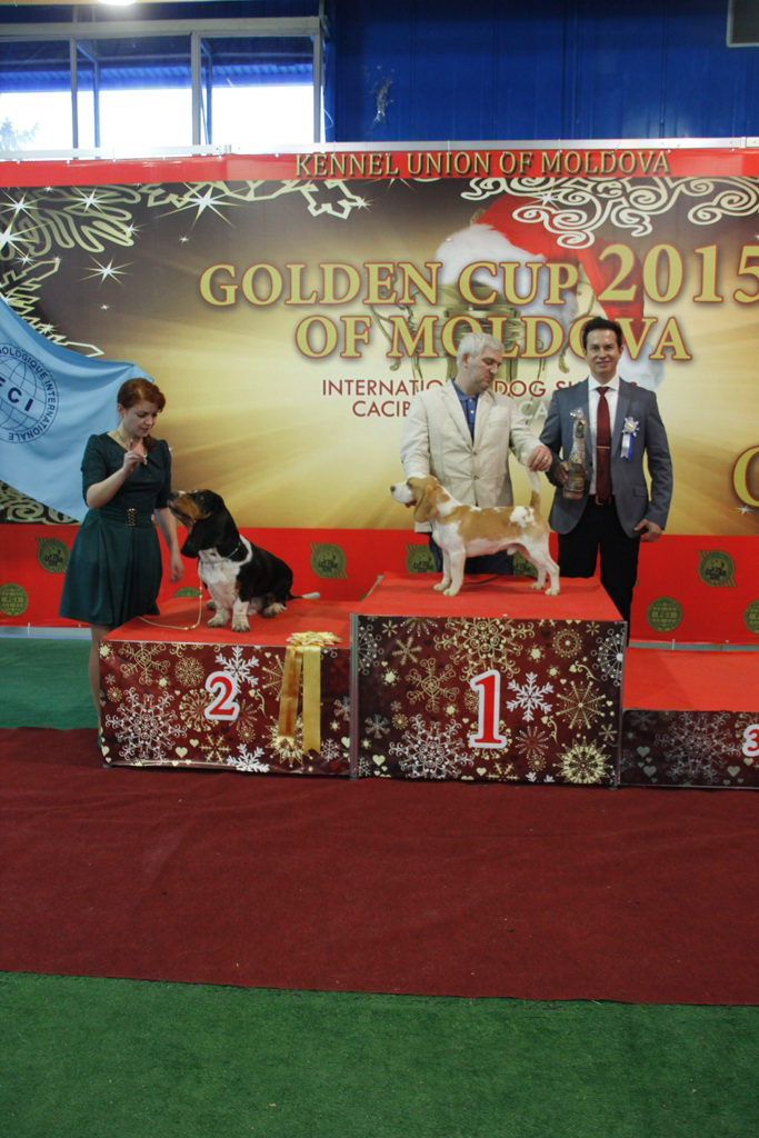 FCI group VI - Winners of the International Dog Show «Golden Cup of Moldova 2015» (Moldova), Sunday, 13 December 2015 (BIS photo)