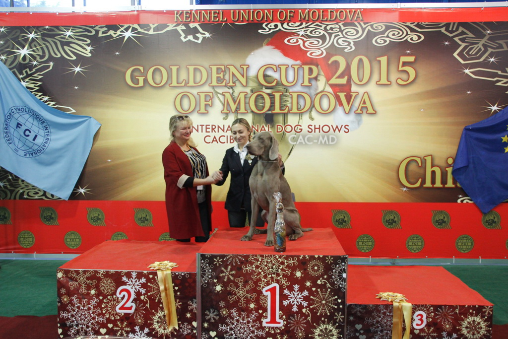 FCI group VII - Winners of the International Dog Show «Golden Cup of Moldova 2015» (Moldova), Sunday, 13 December 2015 (BIS photo)