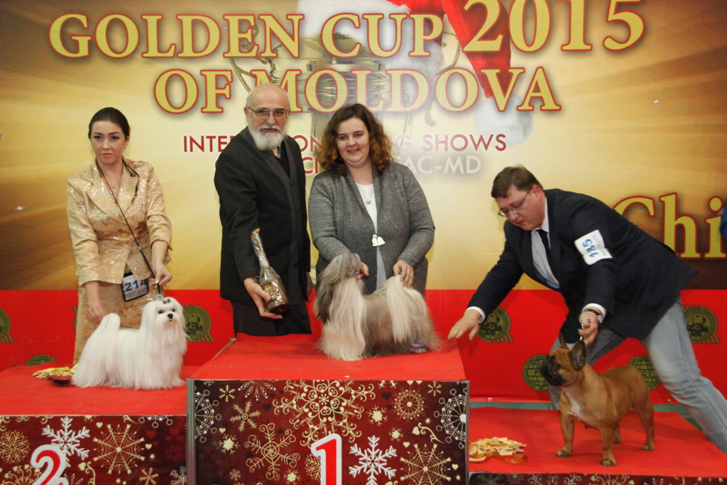 FCI group IX - Winners of the International Dog Show «Golden Cup of Moldova 2015» (Moldova), Sunday, 13 December 2015 (BIS photo)