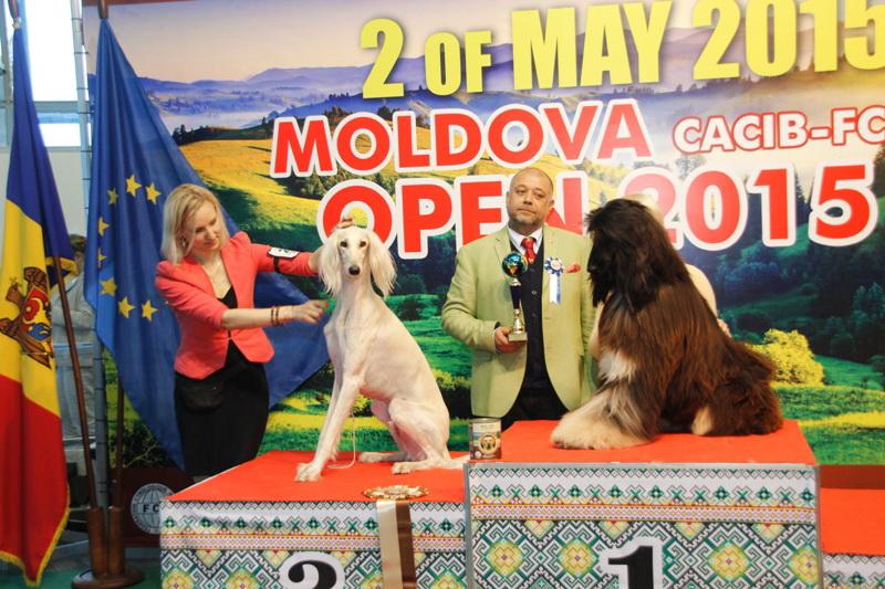 Группа FCI X - Победители Международной выставки собак «Moldavian Open 2015», 2 мая (суббота)