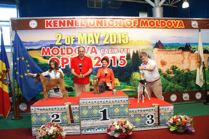 Группа FCI III - Победители Международной выставки собак «Moldavian Open 2015», 2 мая (суббота)