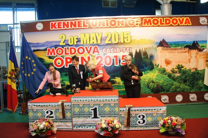 FCI group IV - Winners of the International Dog Show  «Moldavian Open 2015», 2 May (Saturday)
