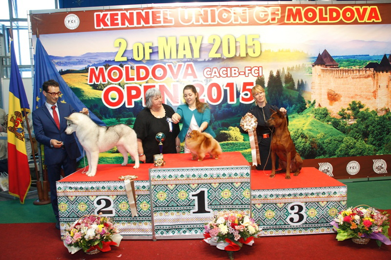 FCI group V - Winners of the International Dog Show  «Moldavian Open 2015», 2 May (Saturday)
