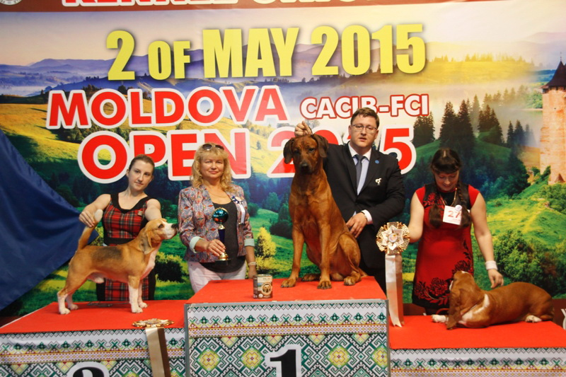 FCI group VI - Winners of the International Dog Show  «Moldavian Open 2015», 2 May (Saturday)