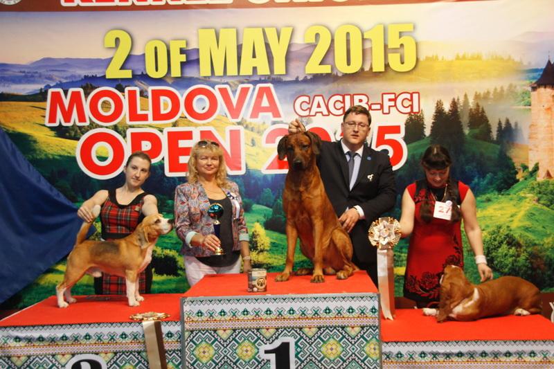 Группа FCI VI - Победители Международной выставки собак «Moldavian Open 2015», 2 мая (суббота)