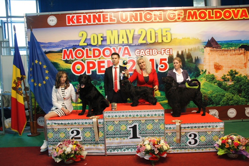 FCI group VIII - Winners of the International Dog Show  «Moldavian Open 2015», 2 May (Saturday)