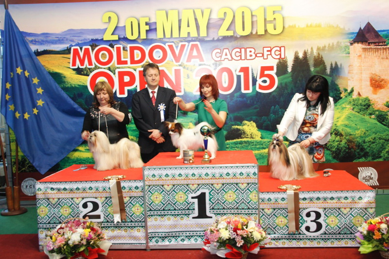 FCI group IX - Winners of the International Dog Show  «Moldavian Open 2015», 2 May (Saturday)