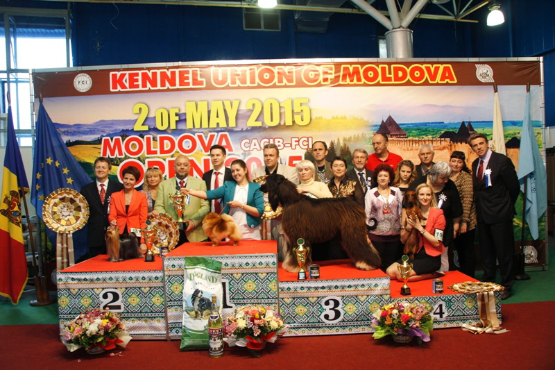 Best in Show «Moldavian Open 2015» - Winners of the International Dog Show  «Moldavian Open 2015», 2 May (Saturday)