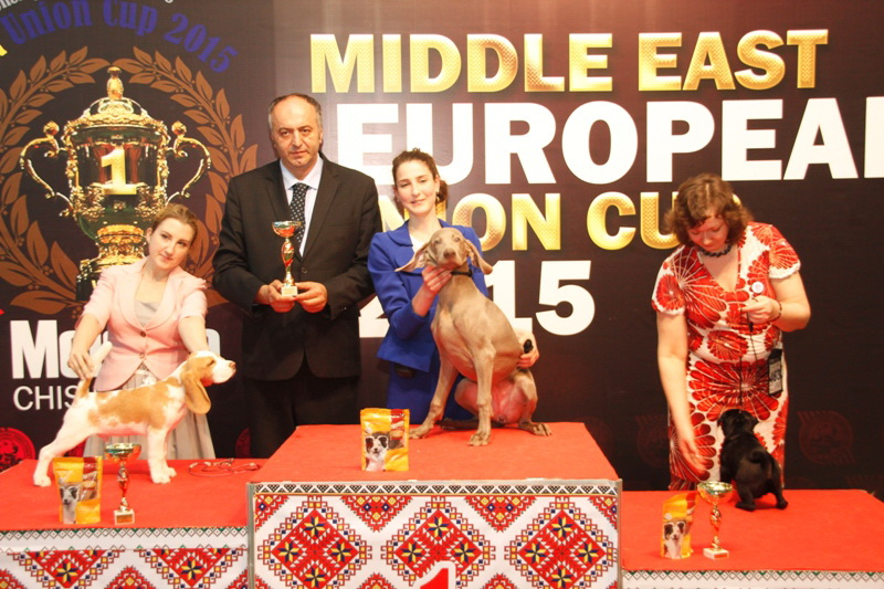 Best Baby - Winners of the International Dog Show  «Middle East European Union Cup 2015», 3 May (Sunday)