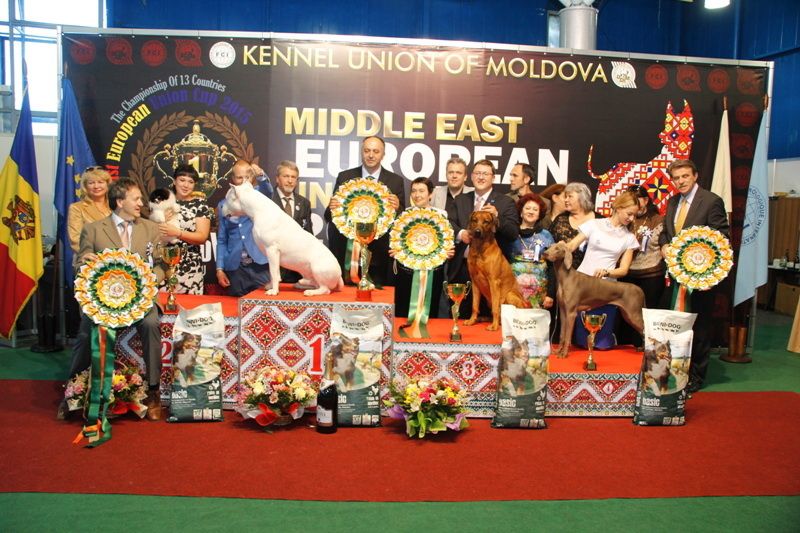 Best in Show «Middle East European Union Cup 2015» - Winners of the International Dog Show  «Middle East European Union Cup 2015», 3 May (Sunday)