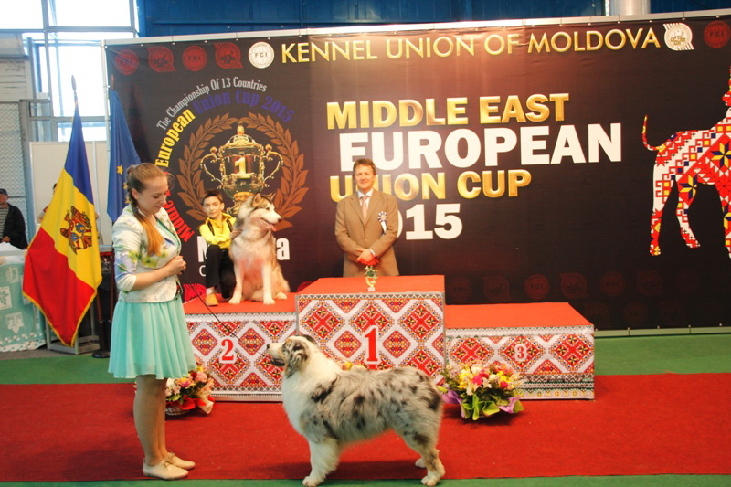 FCI group I - Winners of the International Dog Show  «Middle East European Union Cup 2015», 3 May (Sunday)