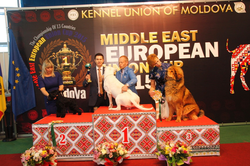 FCI group II - Winners of the International Dog Show  «Middle East European Union Cup 2015», 3 May (Sunday)