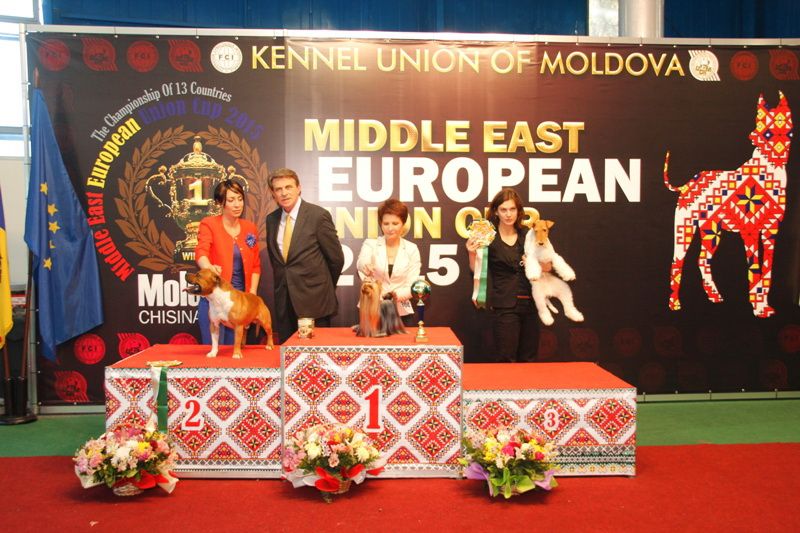 FCI group III - Winners of the International Dog Show  «Middle East European Union Cup 2015», 3 May (Sunday)