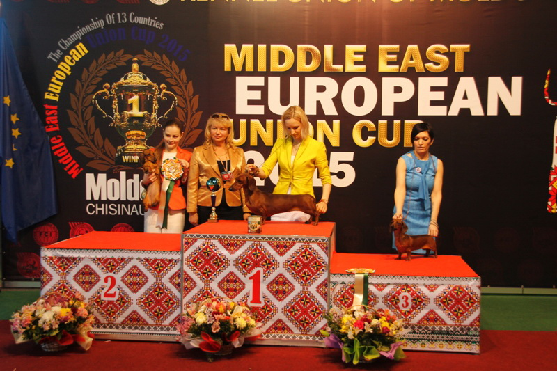 FCI group IV - Winners of the International Dog Show  «Middle East European Union Cup 2015», 3 May (Sunday)