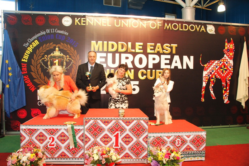 FCI group V - Winners of the International Dog Show  «Middle East European Union Cup 2015», 3 May (Sunday)