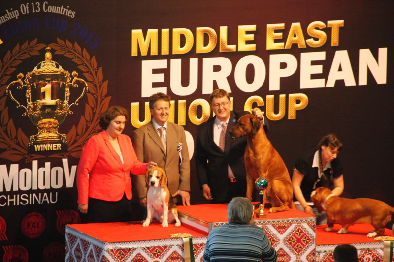 FCI group VI - Winners of the International Dog Show  «Middle East European Union Cup 2015», 3 May (Sunday)