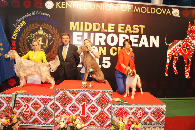 FCI group VII - Winners of the International Dog Show  «Middle East European Union Cup 2015», 3 May (Sunday)