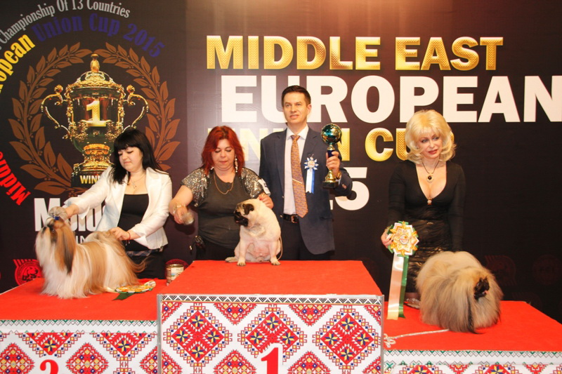 FCI group IX - Winners of the International Dog Show  «Middle East European Union Cup 2015», 3 May (Sunday)