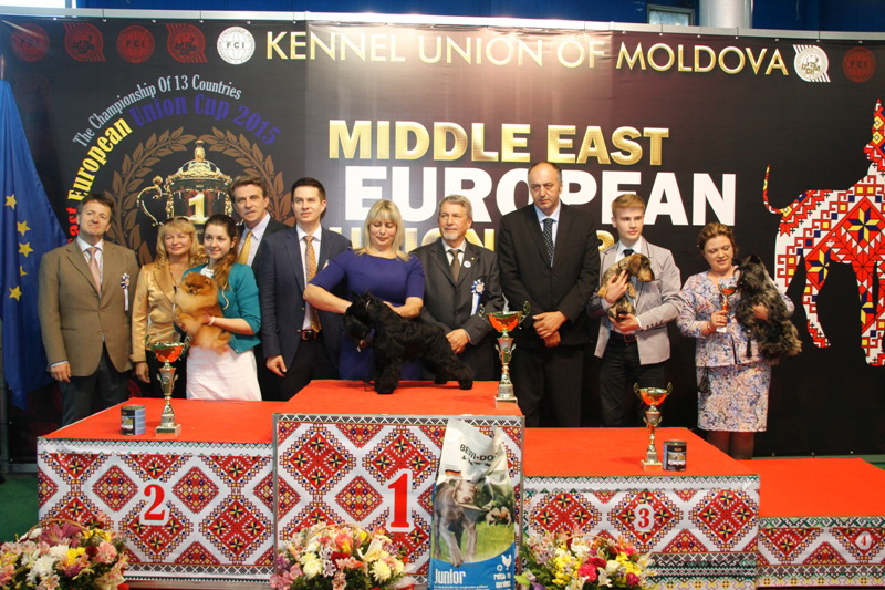 Best Junior - Winners of the International Dog Show  «Middle East European Union Cup 2015», 3 May (Sunday)