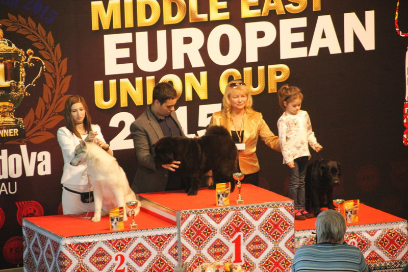 Best Puppy - Winners of the International Dog Show  «Middle East European Union Cup 2015», 3 May (Sunday)