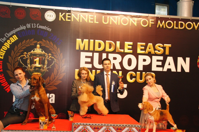 Best Veteran - Winners of the International Dog Show  «Middle East European Union Cup 2015», 3 May (Sunday)
